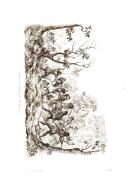 Strana 514