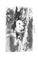 Strana 184