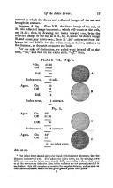 Strana 17
