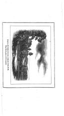 Strana 251