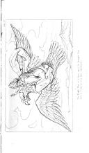 Strana 334
